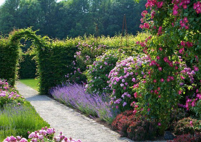 Jardins sans Limites -  Gärten ohne Grenzen